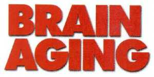 Hydergine for Brain Aging